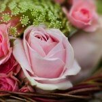 Floral Design Schools in the United States